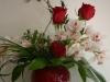 boulderwood-valentine-024