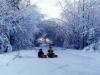snowkids