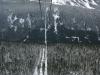 whistler-2011-012